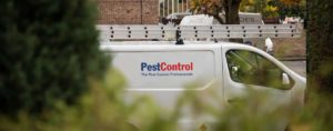Pest Control Pirces 2020