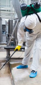 pest removal uk -